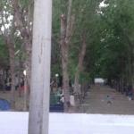 Arboleda Camping Weekend San Bernardo Buenos Aires