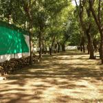 Bosque Camping Weekend San Bernardo Buenos Aires